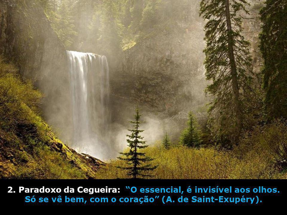 2. Paradoxo da Cegueira: O essencial, é invisível aos olhos