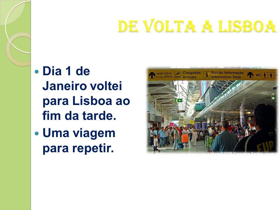 De Volta a Lisboa Dia 1 de Janeiro voltei para Lisboa ao fim da tarde.