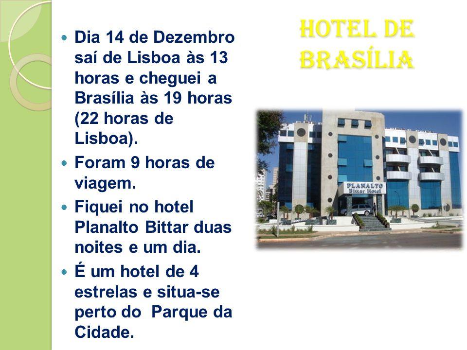 Dia 14 de Dezembro saí de Lisboa às 13 horas e cheguei a Brasília às 19 horas (22 horas de Lisboa).