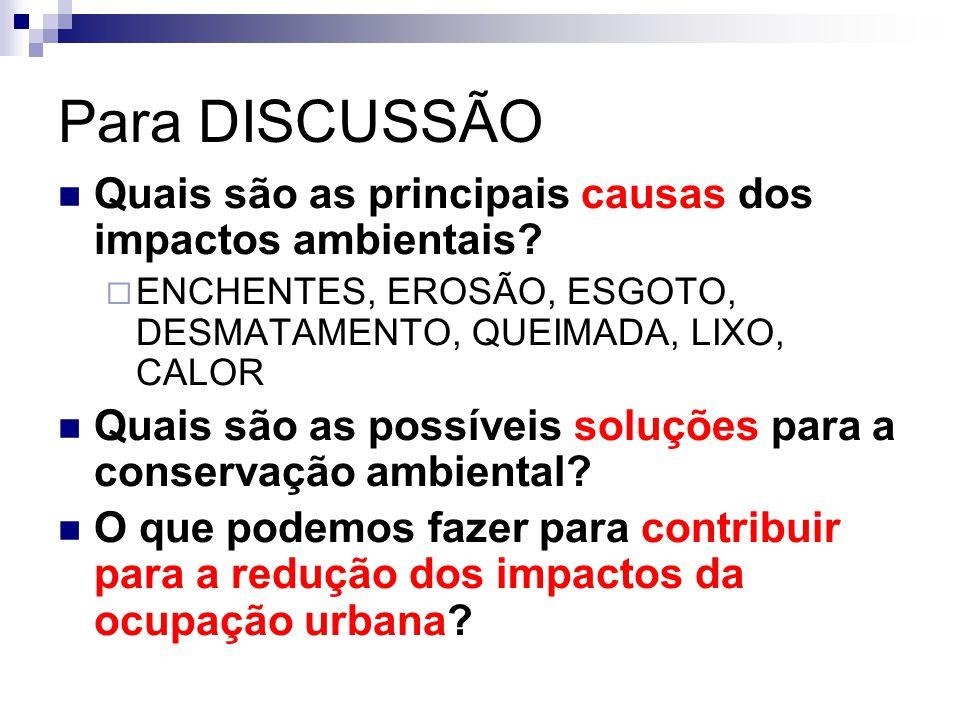 Para DISCUSSÃO Quais são as principais causas dos impactos ambientais