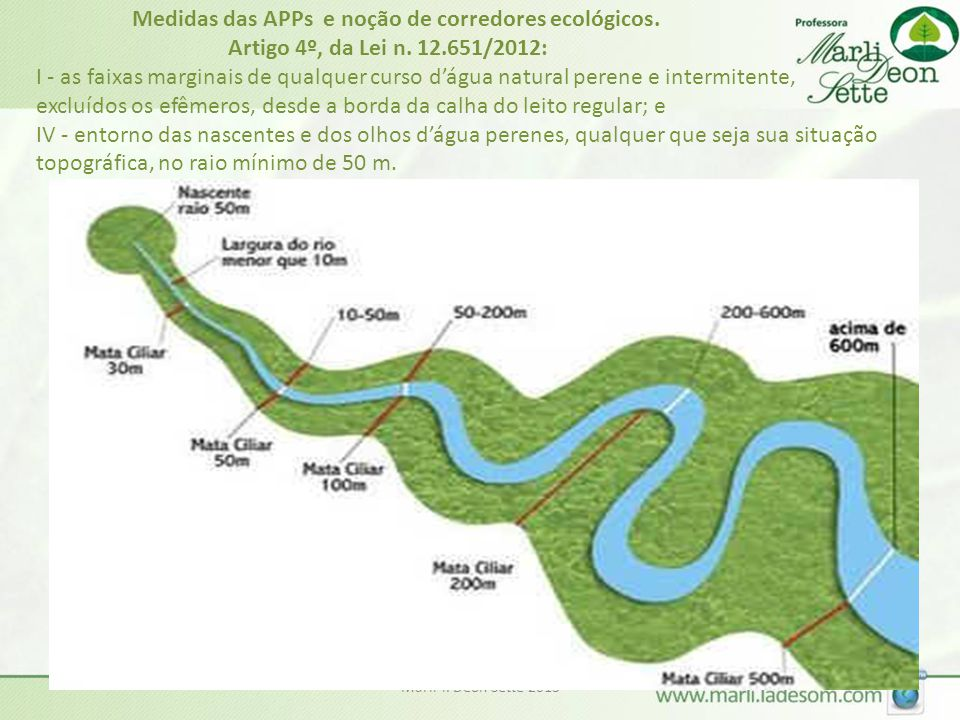 Medidas das APPs e noção de corredores ecológicos. Artigo 4º, da Lei n