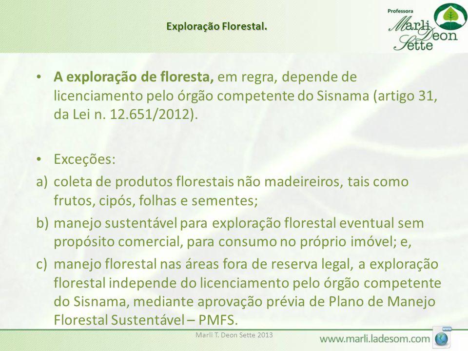 Exploração Florestal.