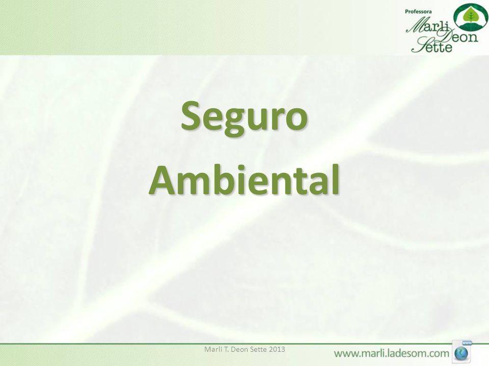 Seguro Ambiental Marli T. Deon Sette 2013