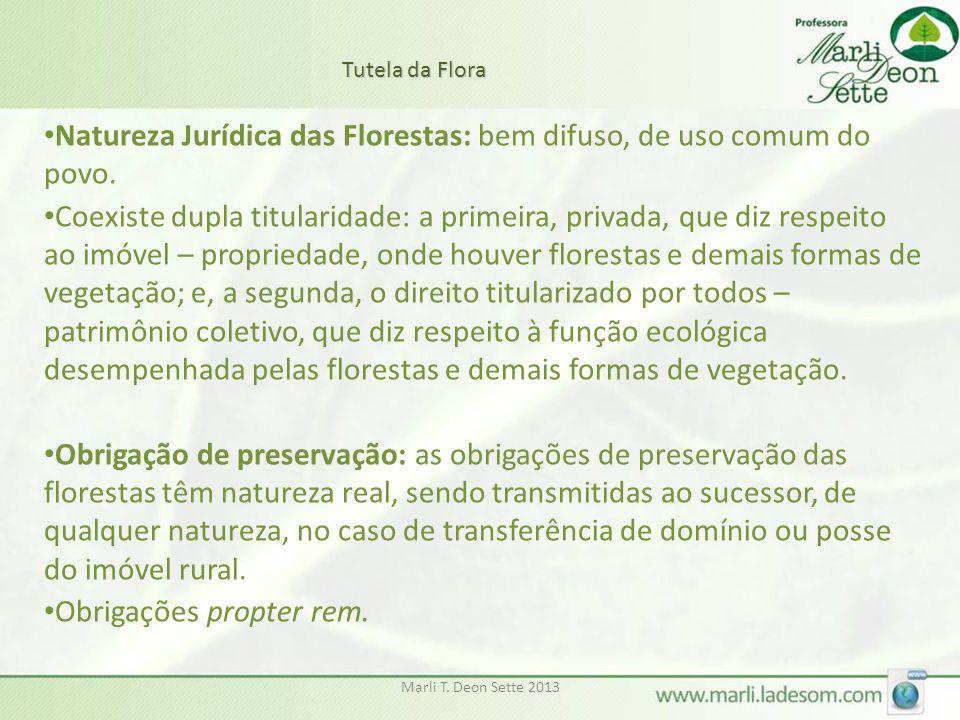 Natureza Jurídica das Florestas: bem difuso, de uso comum do povo.