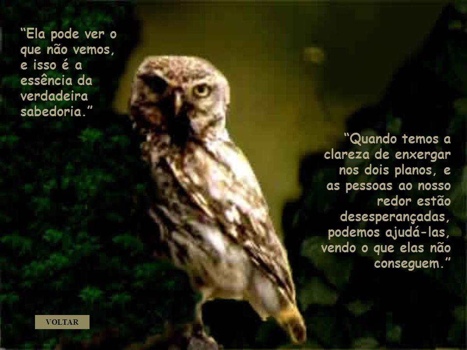 Ela pode ver o que não vemos, e isso é a essência da verdadeira sabedoria.
