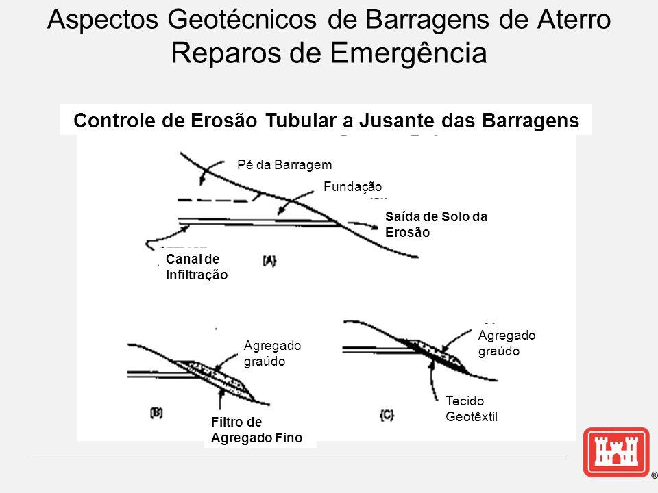 Controle de Erosão Tubular a Jusante das Barragens