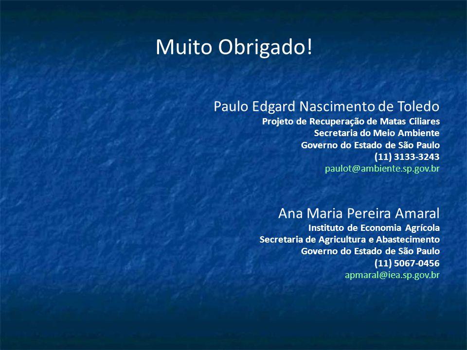 Muito Obrigado! Paulo Edgard Nascimento de Toledo