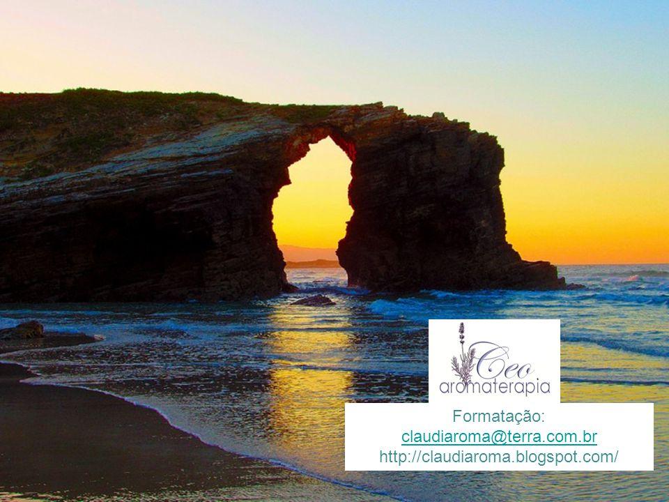 Formatação: claudiaroma@terra.com.br