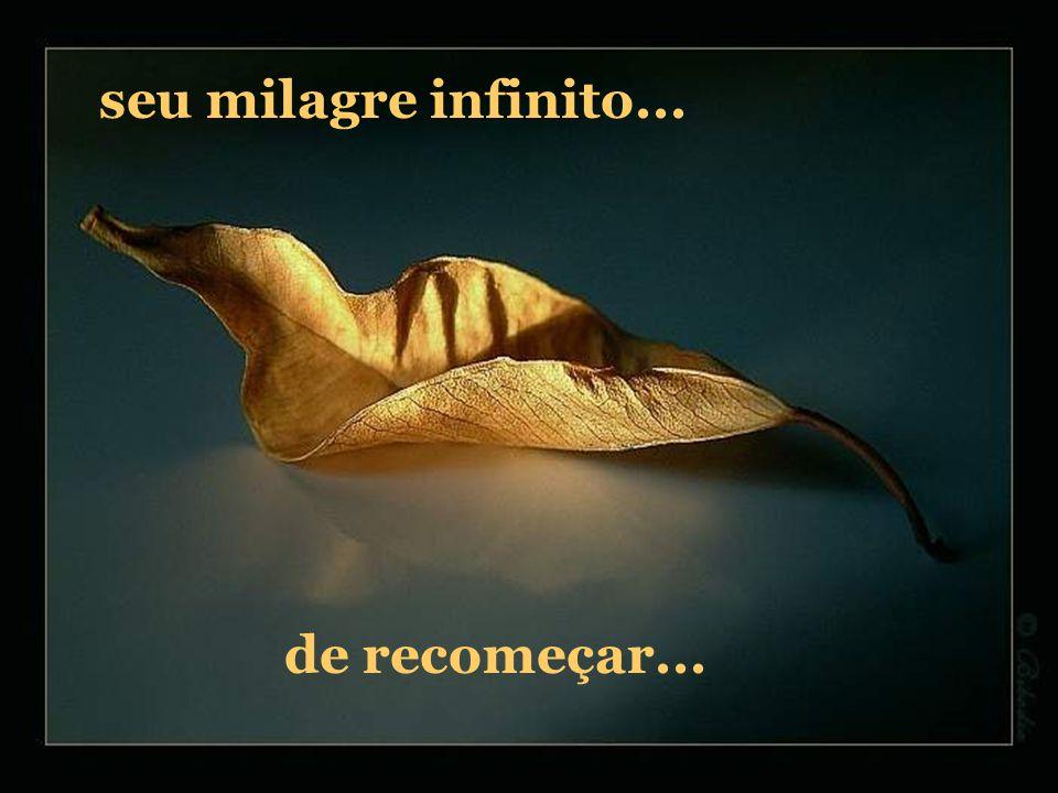 seu milagre infinito... de recomeçar...