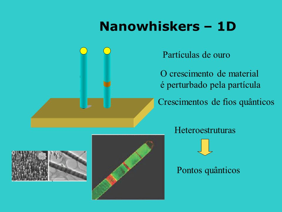 Nanowhiskers – 1D Partículas de ouro O crescimento de material