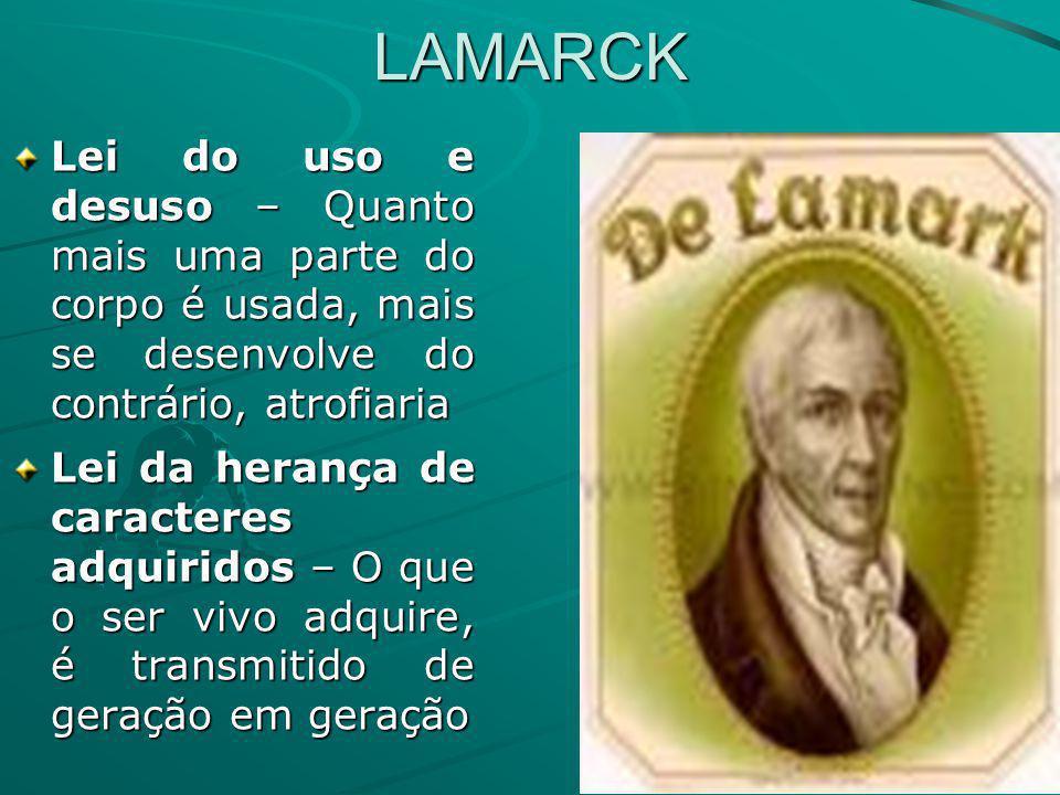 LAMARCK Lei do uso e desuso – Quanto mais uma parte do corpo é usada, mais se desenvolve do contrário, atrofiaria.