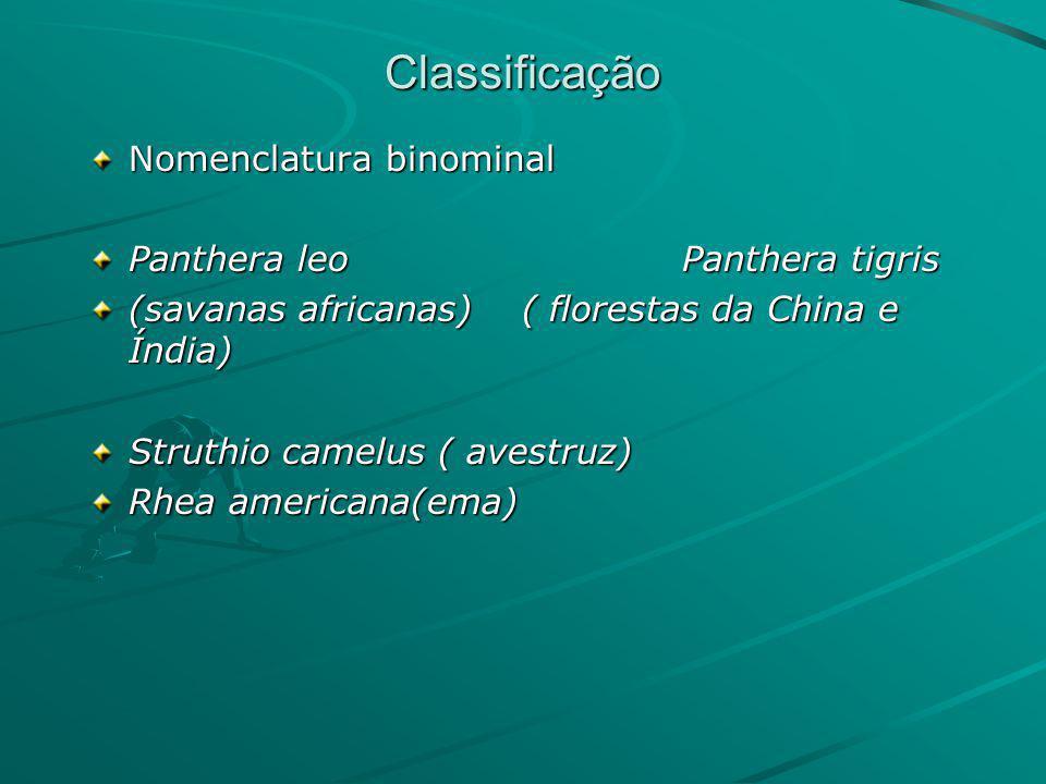 Classificação Nomenclatura binominal Panthera leo Panthera tigris
