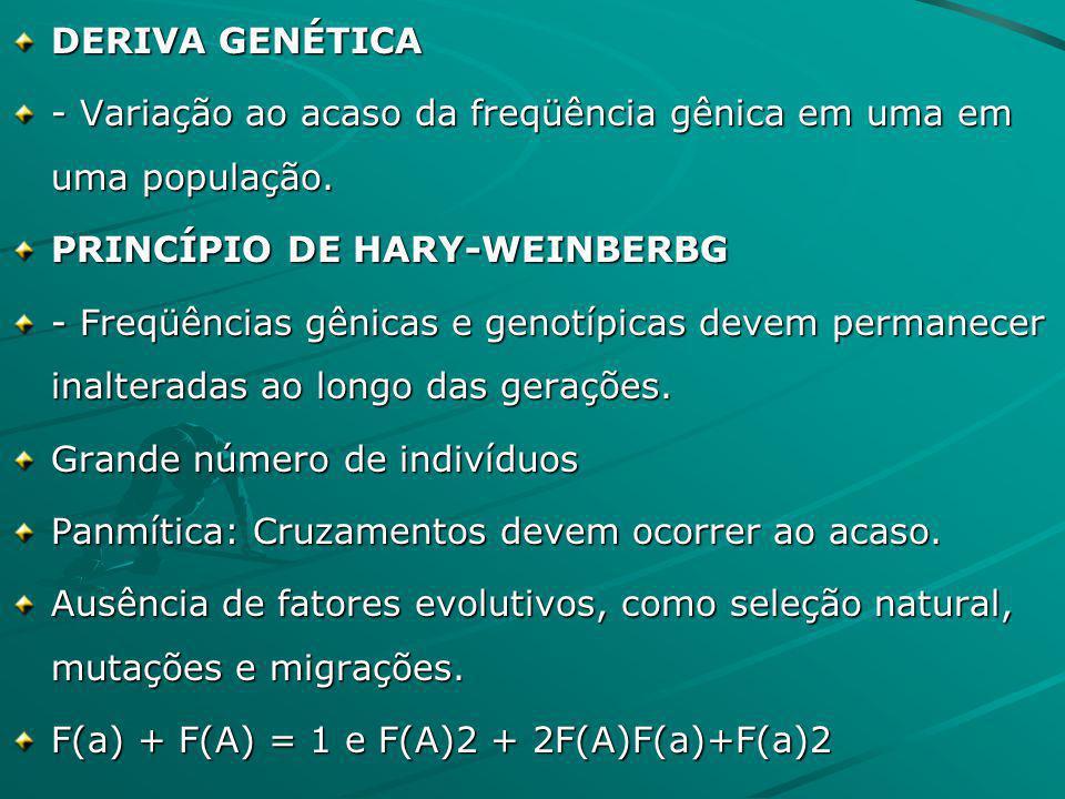 DERIVA GENÉTICA - Variação ao acaso da freqüência gênica em uma em uma população. PRINCÍPIO DE HARY-WEINBERBG.