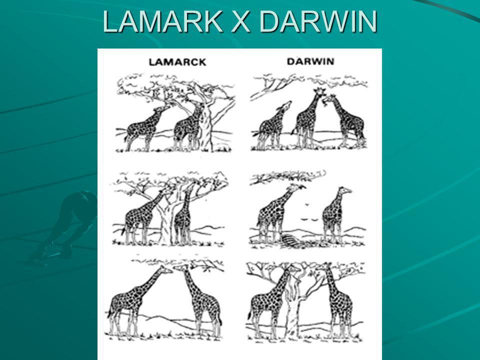 LAMARK X DARWIN