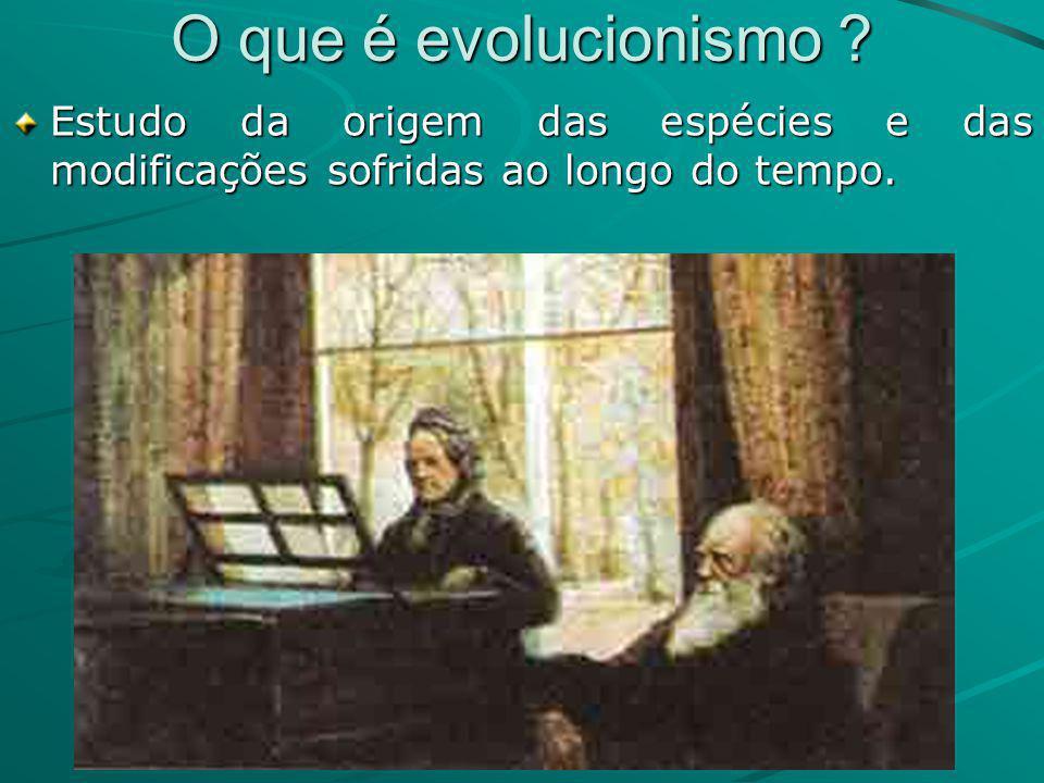 O que é evolucionismo .