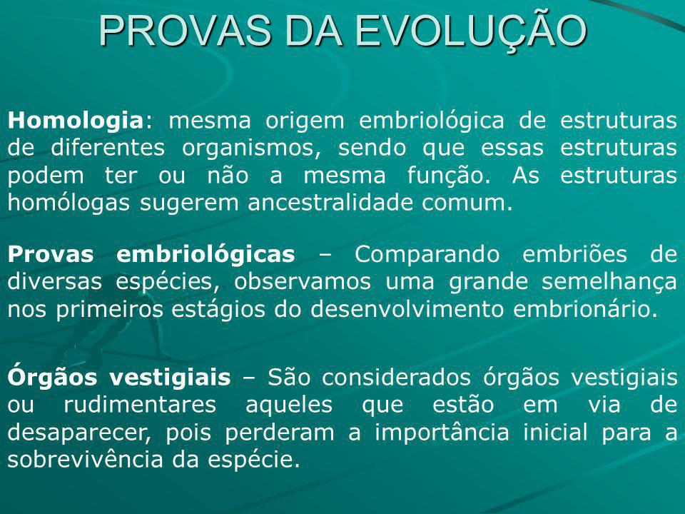 PROVAS DA EVOLUÇÃO