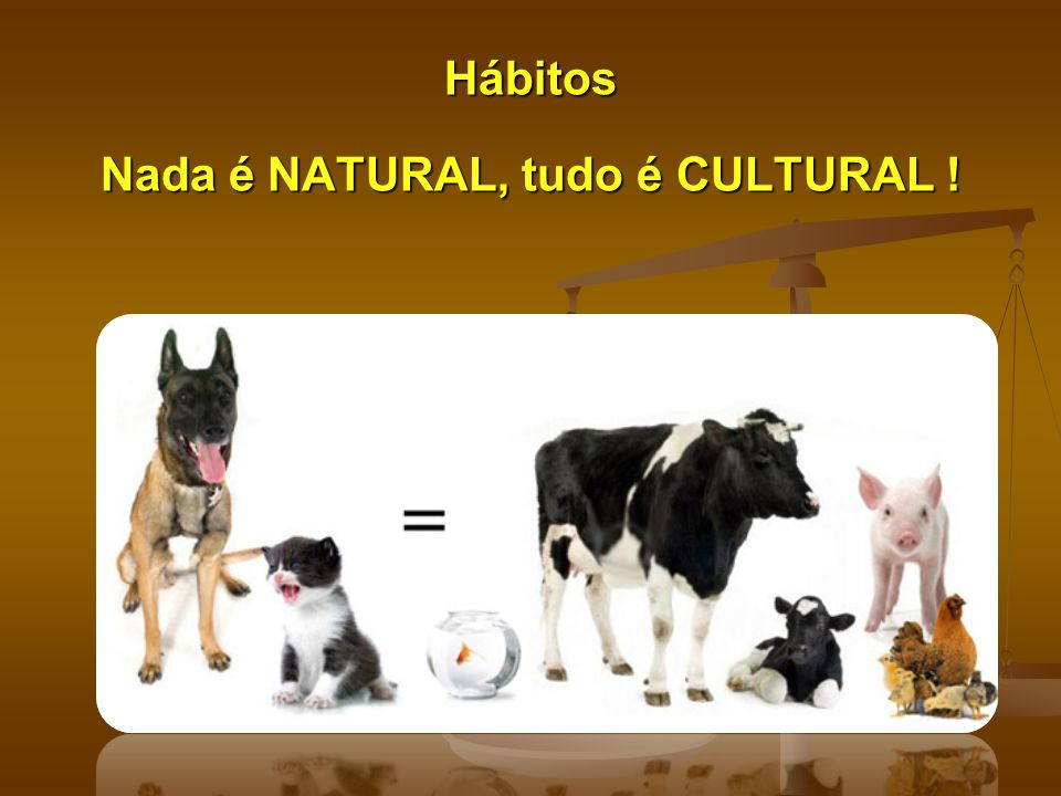 Nada é NATURAL, tudo é CULTURAL !