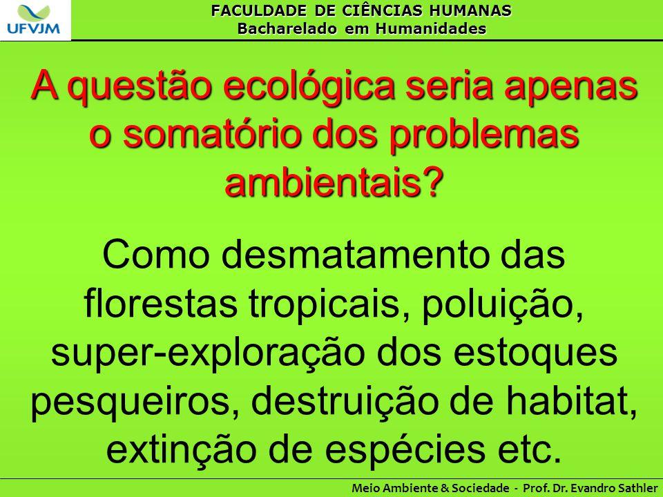 A questão ecológica seria apenas o somatório dos problemas ambientais