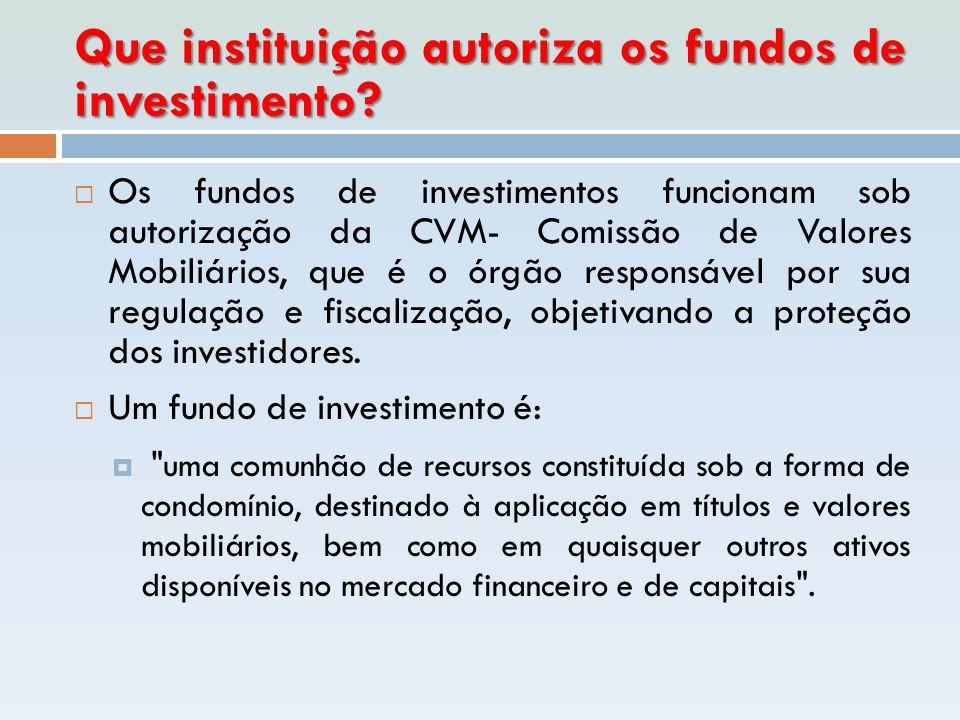 Que instituição autoriza os fundos de investimento
