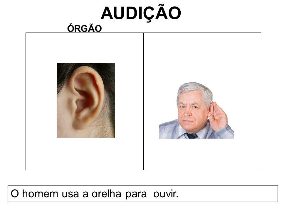 AUDIÇÃO ÓRGÃO O homem usa a orelha para ouvir.
