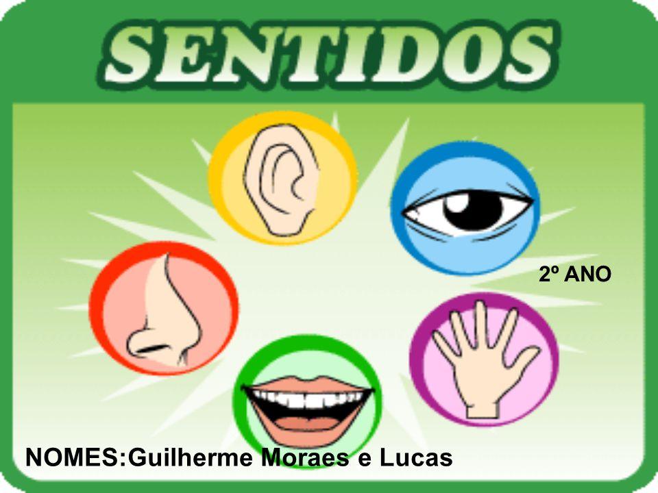 NOMES:Guilherme Moraes e Lucas