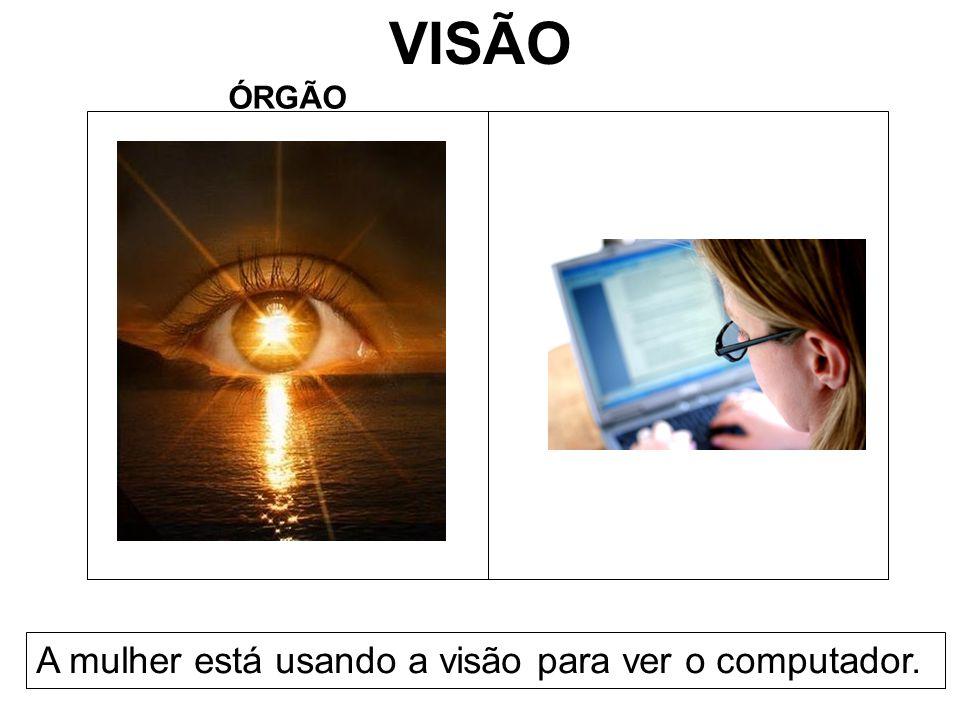 VISÃO ÓRGÃO A mulher está usando a visão para ver o computador.