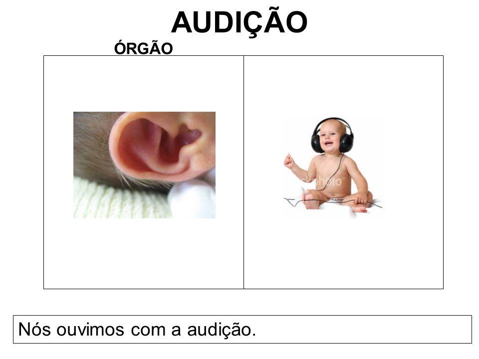 AUDIÇÃO ÓRGÃO Nós ouvimos com a audição.