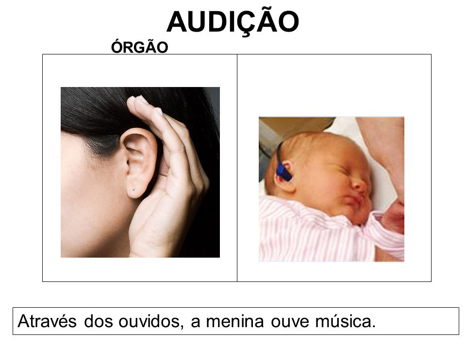 AUDIÇÃO ÓRGÃO Através dos ouvidos, a menina ouve música.