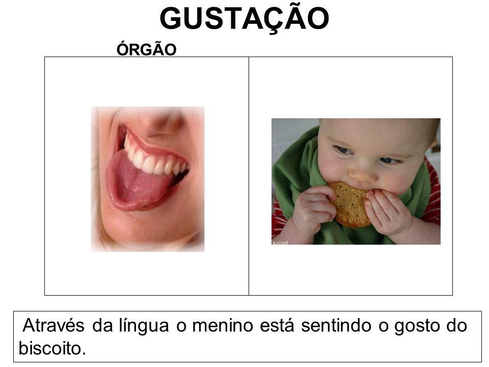 GUSTAÇÃO Através da língua o menino está sentindo o gosto do biscoito.