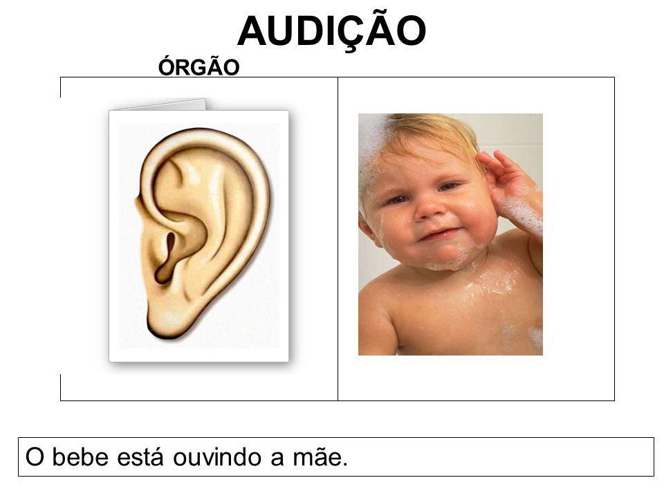 AUDIÇÃO ÓRGÃO O bebe está ouvindo a mãe.