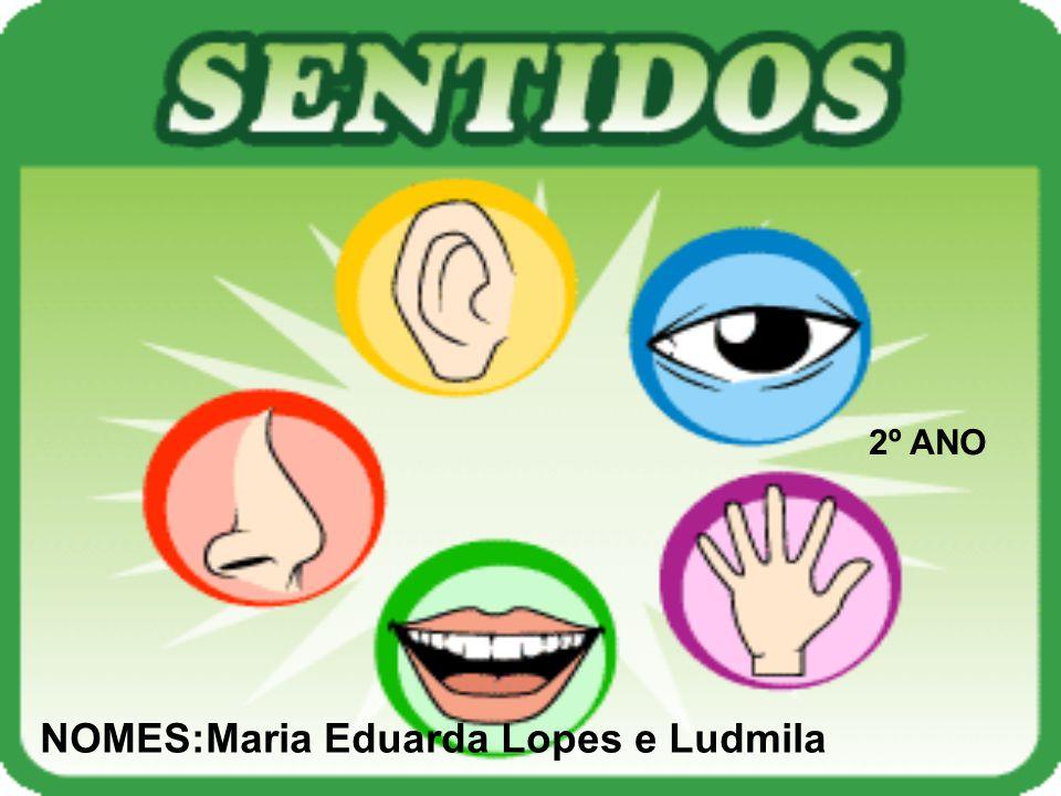 NOMES:Maria Eduarda Lopes e Ludmila
