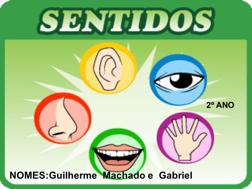 NOMES:Guilherme Machado e Gabriel