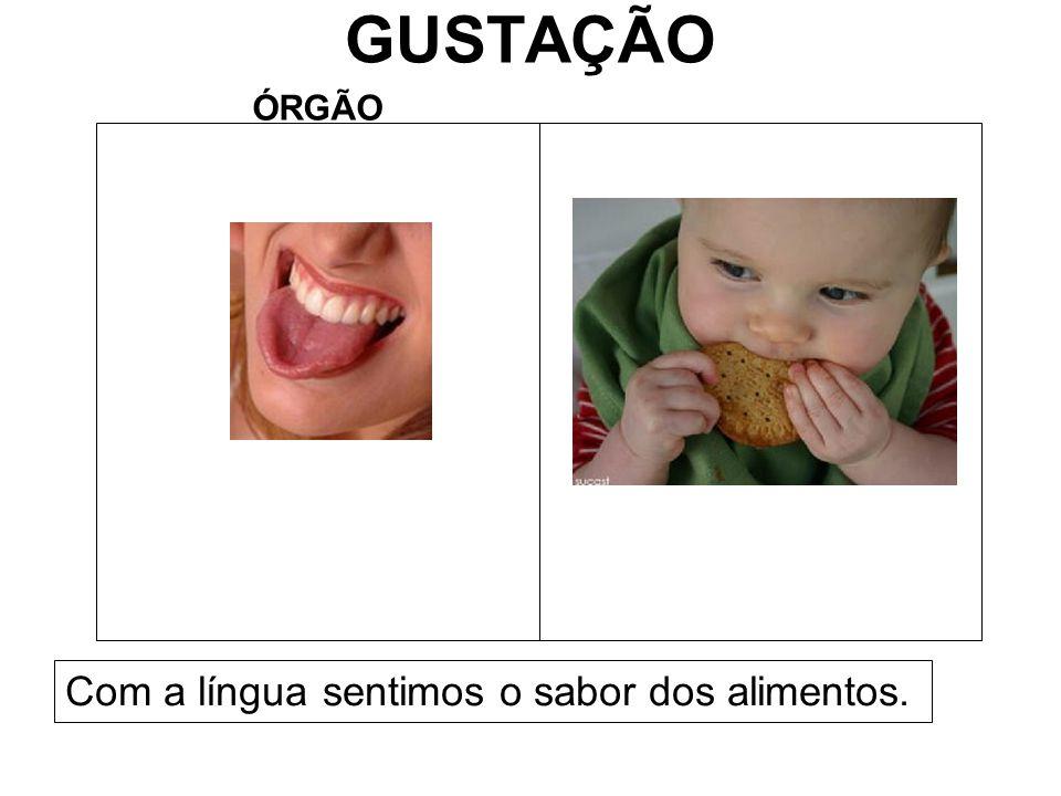 GUSTAÇÃO ÓRGÃO Com a língua sentimos o sabor dos alimentos.