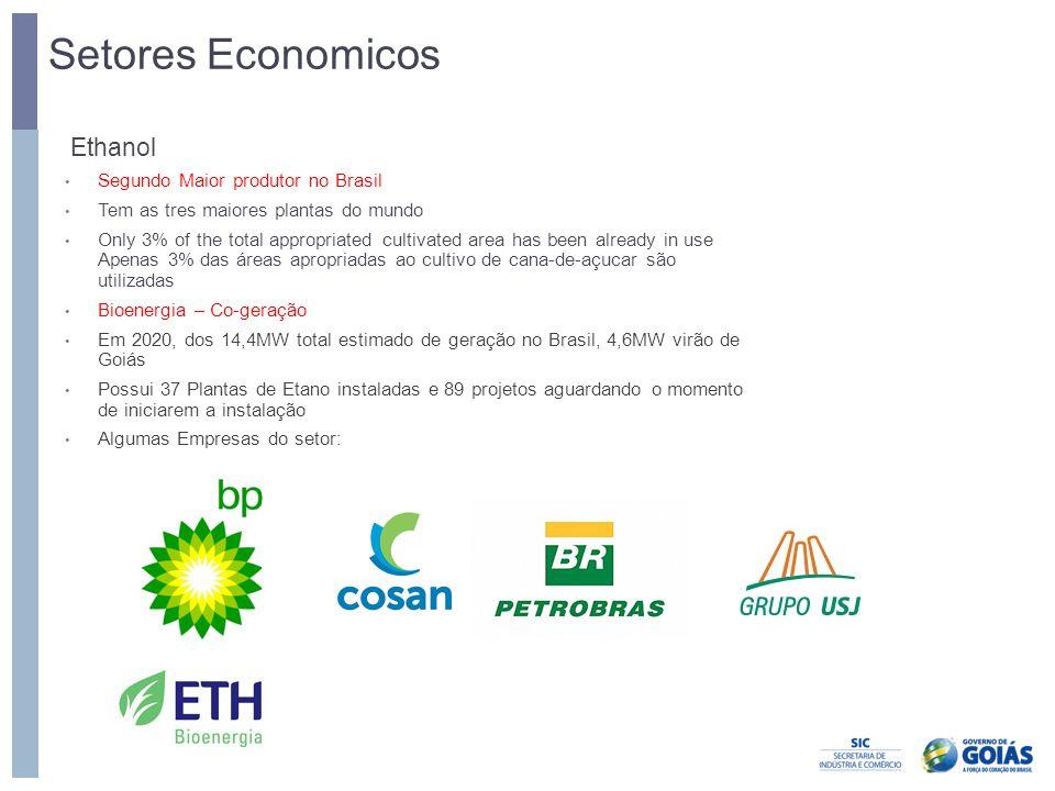 Setores Economicos Ethanol Segundo Maior produtor no Brasil