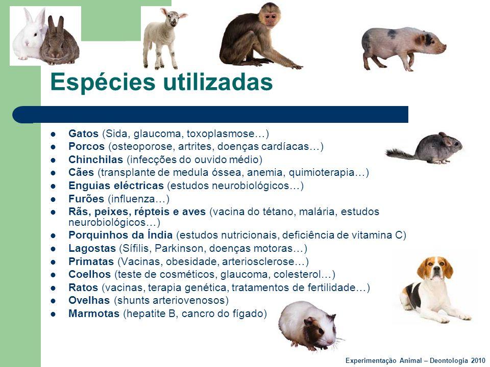 Espécies utilizadas Gatos (Sida, glaucoma, toxoplasmose…)