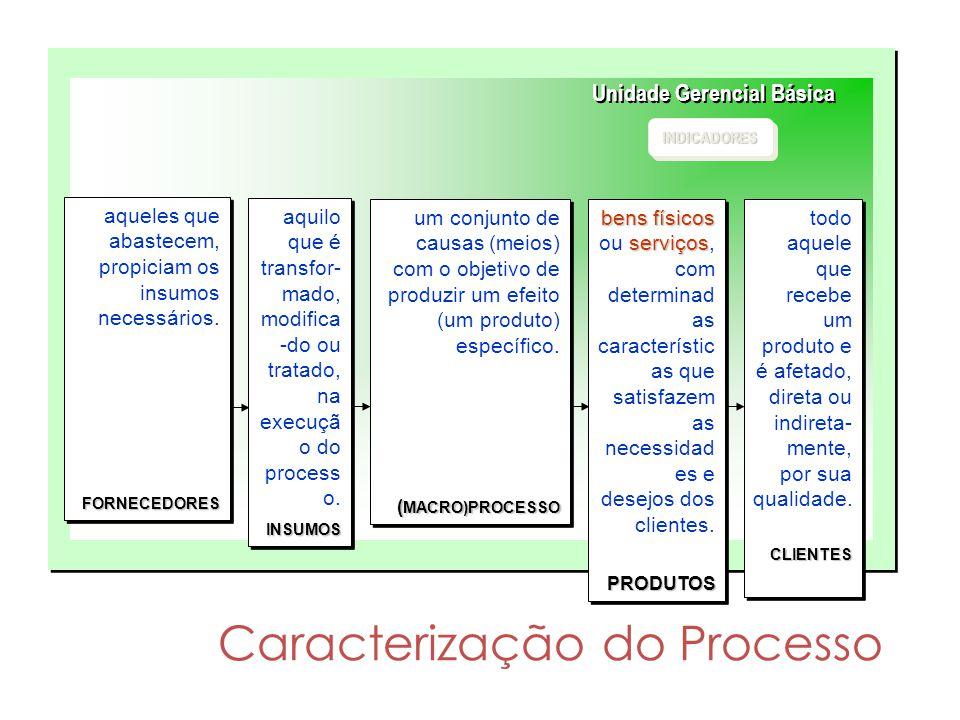 Caracterização do Processo