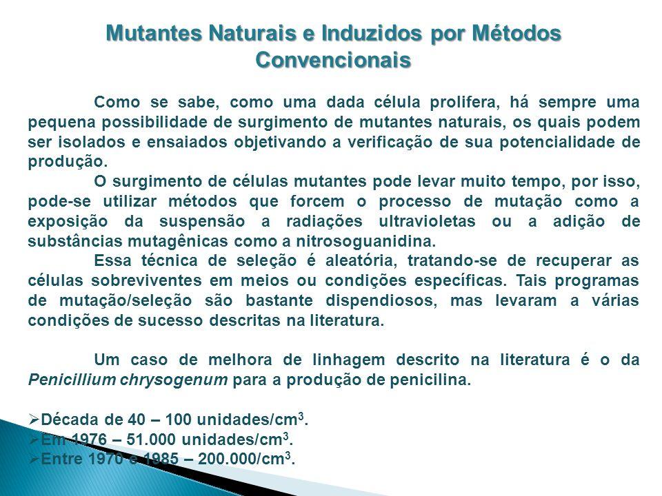 Mutantes Naturais e Induzidos por Métodos Convencionais