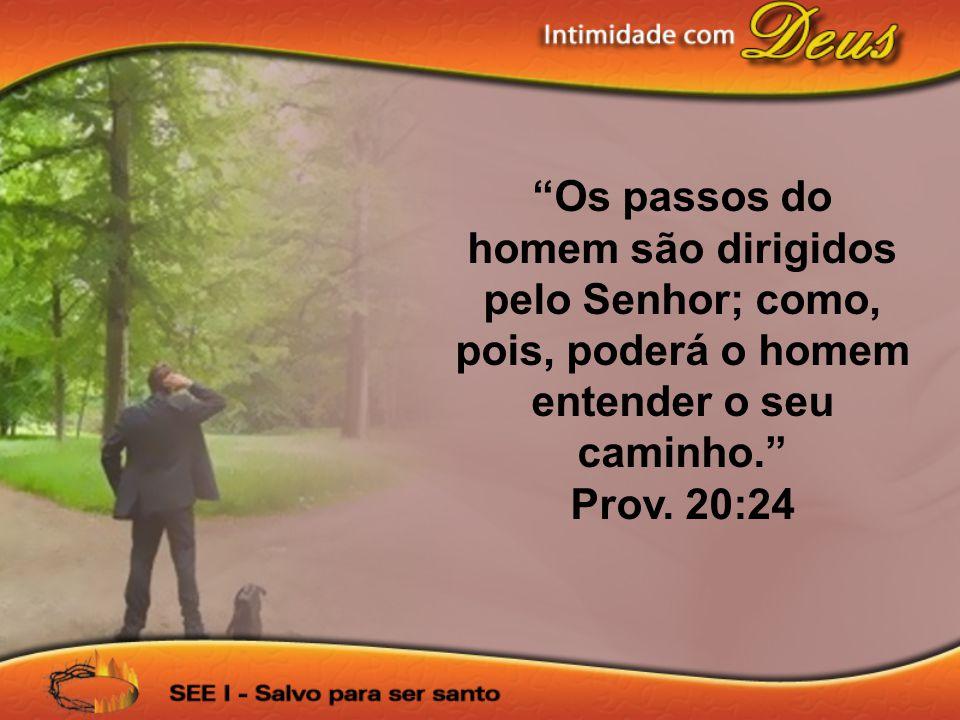 Os passos do homem são dirigidos pelo Senhor; como, pois, poderá o homem entender o seu caminho.
