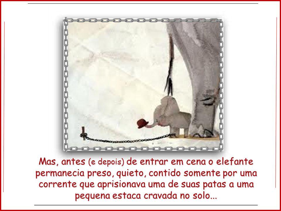 Mas, antes (e depois) de entrar em cena o elefante permanecia preso, quieto, contido somente por uma corrente que aprisionava uma de suas patas a uma pequena estaca cravada no solo...