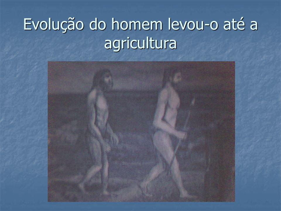 Evolução do homem levou-o até a agricultura