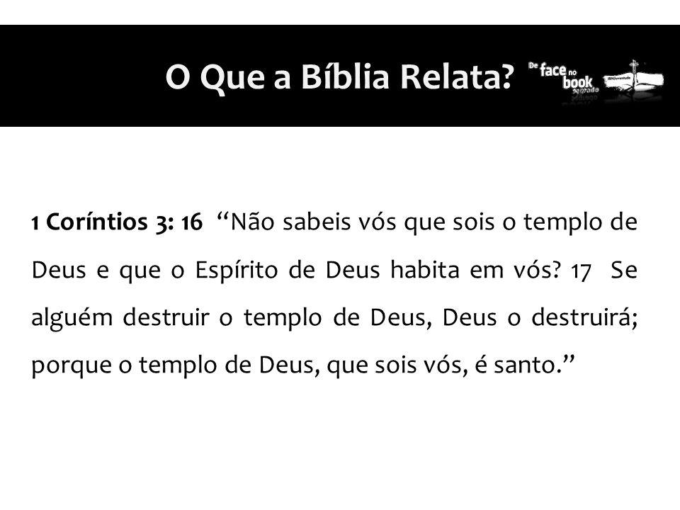 O Que a Bíblia Relata