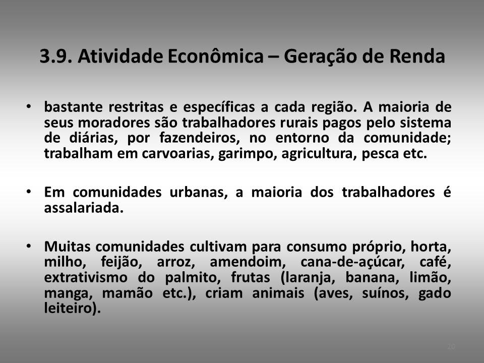3.9. Atividade Econômica – Geração de Renda