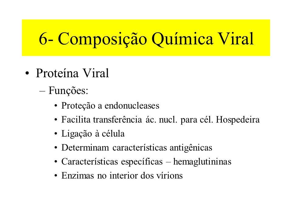 6- Composição Química Viral