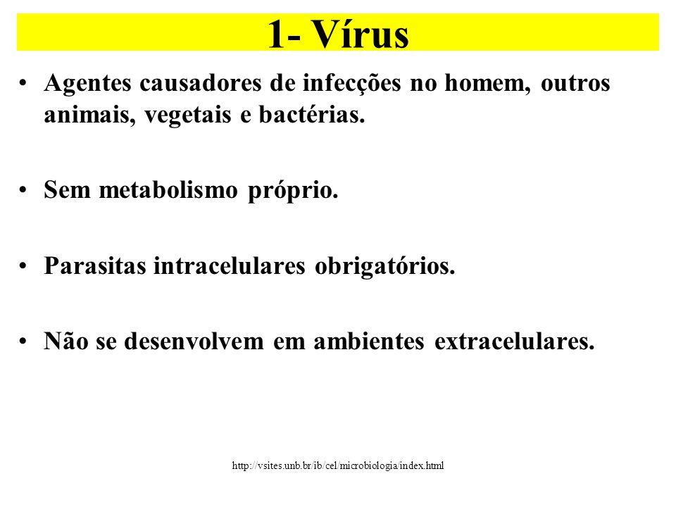1- Vírus Agentes causadores de infecções no homem, outros animais, vegetais e bactérias. Sem metabolismo próprio.
