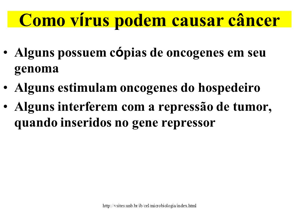 Como vírus podem causar câncer