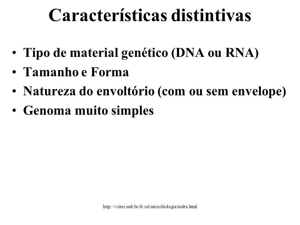 Características distintivas