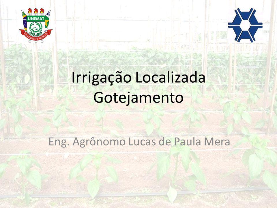 Irrigação Localizada Gotejamento