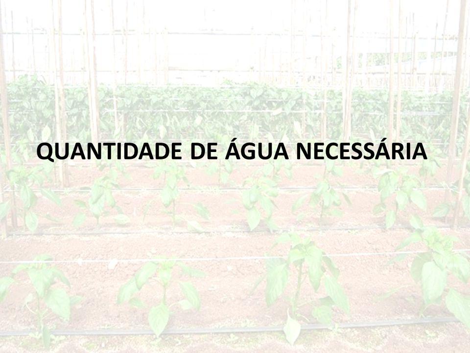 QUANTIDADE DE ÁGUA NECESSÁRIA
