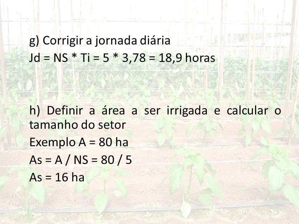 g) Corrigir a jornada diária Jd = NS. Ti = 5