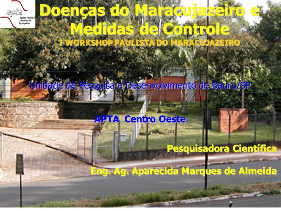 Pesquisadora Científica Eng. Ag. Aparecida Marques de Almeida